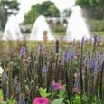 須磨離宮公園の噴水