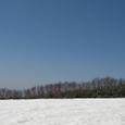 能郷白山の雪田