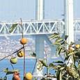 秋の明石海峡大橋
